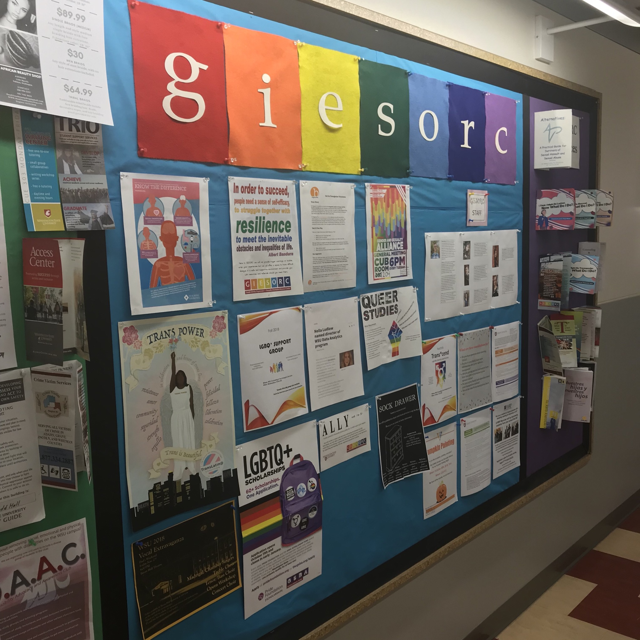 picture of the GIESORC bulletin board